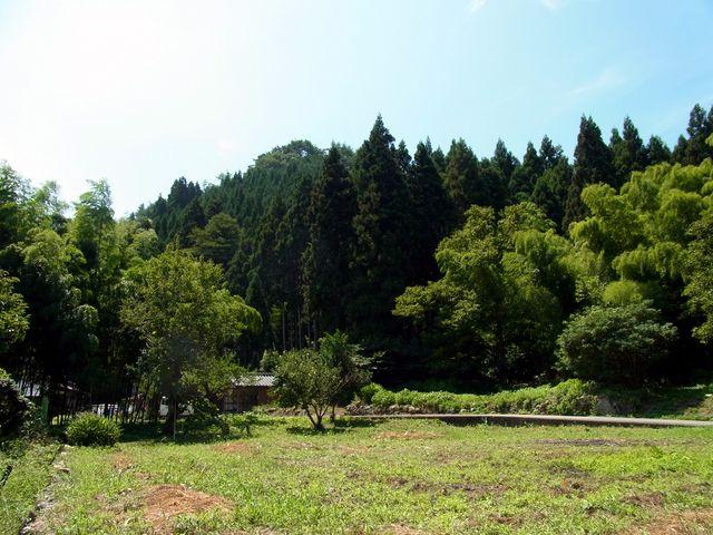 山林のイメージ