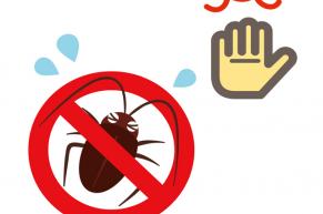 北向き、川の近く、一階の部屋……ゴキブリが出やすい物件とは?