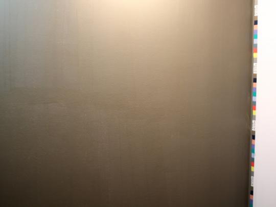 乾いていく行程で塗りムラがあるように見えるが、完全に乾くとキレイに仕上がる