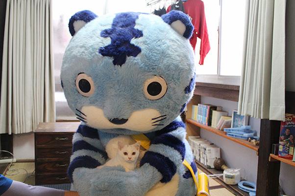 ⑦猫を抱くタイガー
