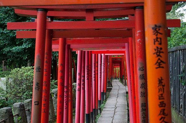 根津神社の隣にある「乙女稲荷神社」には多くの鳥居が