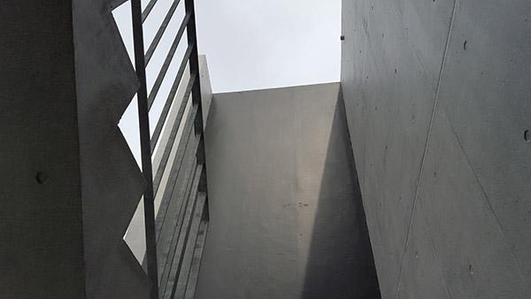 共用部の階段は明るい日差しが差し込む設計
