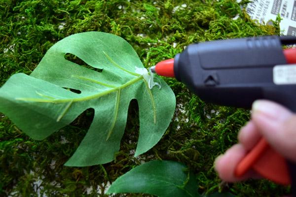 葉っぱなどを苔のタイルにくっつけてみる