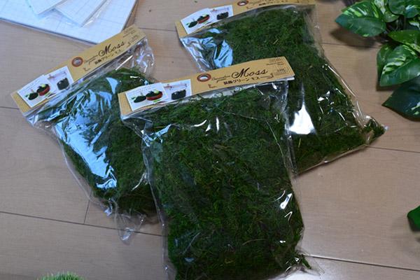 シールを剥がした上に乾燥させた苔「装飾グリーン モス」を振りかける
