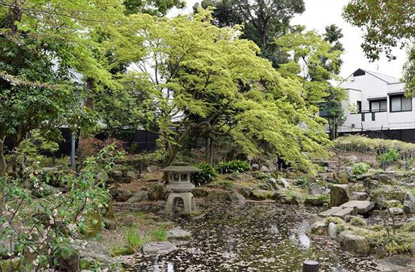 日本庭園風の池があり、近隣住民の憩いの場として親しまれている「天沼弁天池公園」