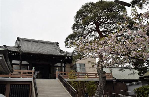 CHINTAI_NEWS_荻窪_03