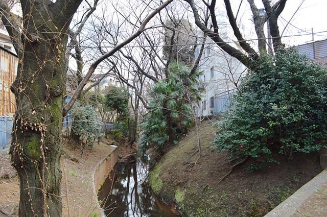この小川も、代田橋を走る甲州街道も、だいだらぼっちの足跡の中?