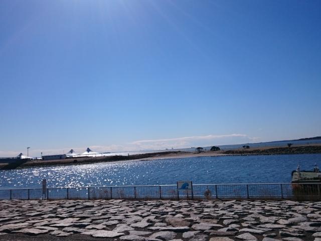 西葛西の海沿いの風景