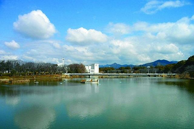 江戸時代初期に作られた向山大池