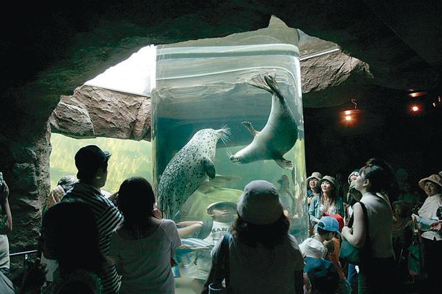 旭山動物園。あざらし館の円柱水槽などユニークな展示方法がいっぱい