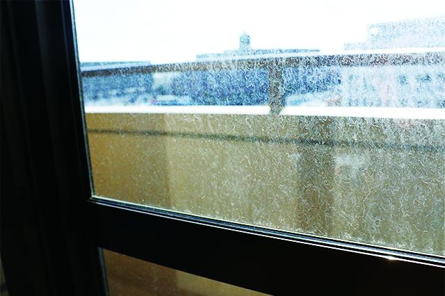 掃除前。砂埃と雨風にさらされ、白いつぶ状の汚れがびっしり……|100均グッズで窓・網戸掃除