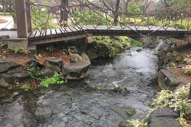 木立に囲まれた自然豊かなしょうぶ沼公園。小川も流れる|東京メトロ直通運転開始で便利になる街「北綾瀬」「方南町」をサキドリ取材してきた