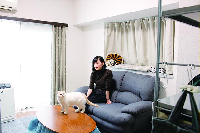 賃貸でスコティッシュフォールド6匹と暮らすひらまたまさん|【猫と暮らす】賃貸でスコティッシュフォールド6匹! 狭くても猫アレルギーでも快適