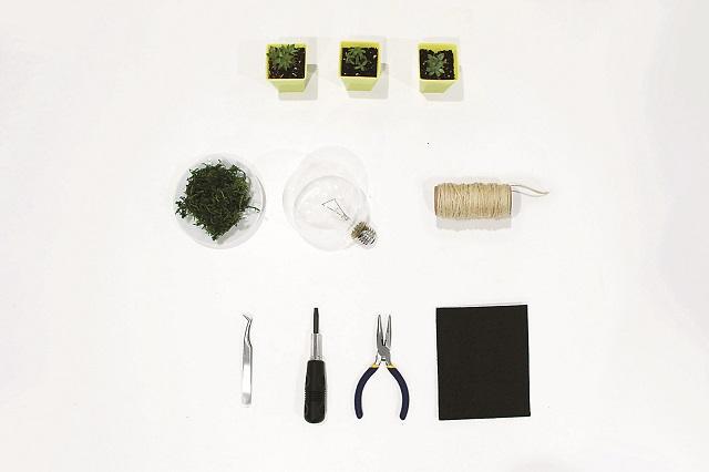 電球テラリウム制作に使用した道具と材料|100均グッズで簡単&オシャレな電球テラリウムの作り方