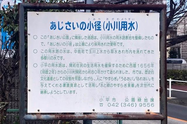 流れのある通路には「あじさいの小径(こみち)」という愛称が付いている 〝日本一大きい丸ポスト〟のある街・小平はノスタルジック&SNS映えする風景の宝庫だった