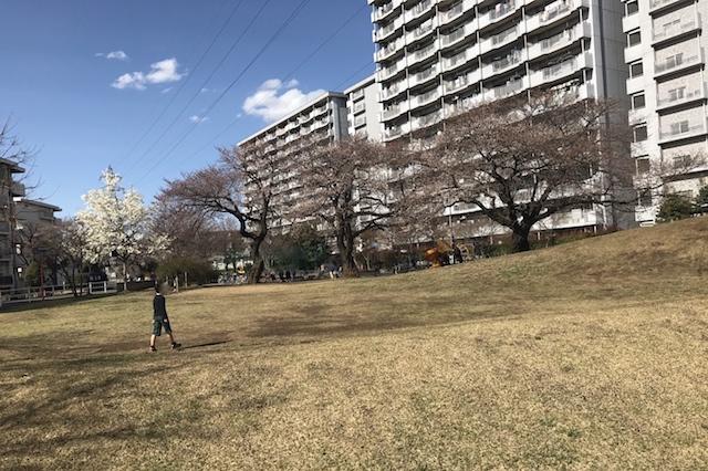 わぁ、広々~! 七小東公園 〝日本一大きい丸ポスト〟のある街・小平はノスタルジック&SNS映えする風景の宝庫だった
