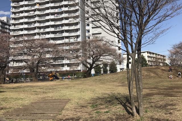 「七小東公園」は桜も咲いていて素晴らしいロケーション 〝日本一大きい丸ポスト〟のある街・小平はノスタルジック&SNS映えする風景の宝庫だった