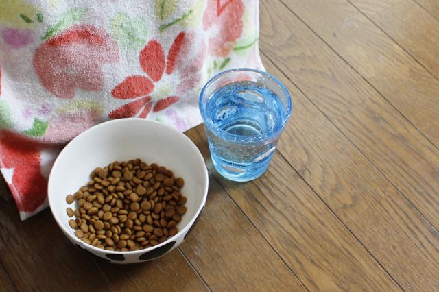 はっさくが水を飲みやすいように、高さのあるコップに入れている|【猫との暮らし】中野のワンルームで愛猫と暮らす女性に、ペット可物件を探すコツを聞いた