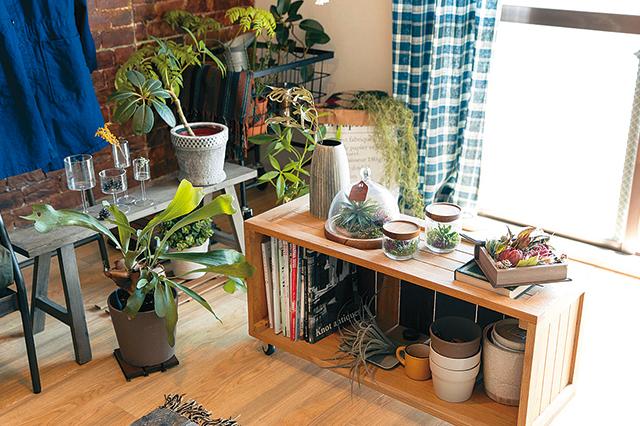 S.Kさんにとっての癒やしスポット。背の低い家具がグリーン置き場としても活躍している|【インテリアコーディネート術】インテリアスタイリストに聞く、くつろぎ部屋のつくり方