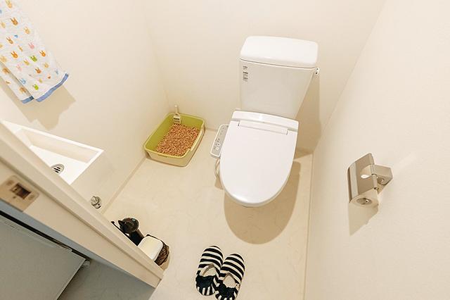 猫用のトイレを置いても十分にスペースのある広いトイレ