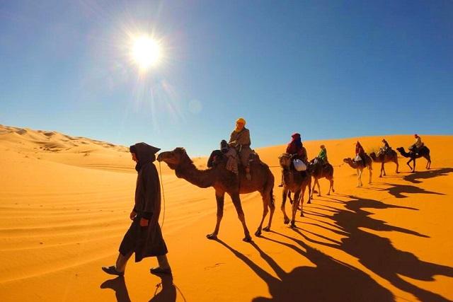 世界一周でめぐった砂漠