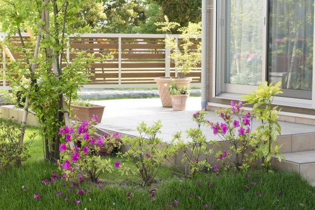 庭付き戸建物件なら家庭菜園やガーデニングも楽しめる
