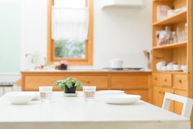 調理スペースだけでなく、ダイニングスペースも広く確保できる1DK