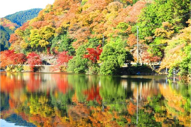 埼玉県のお出かけスポット:鎌北湖