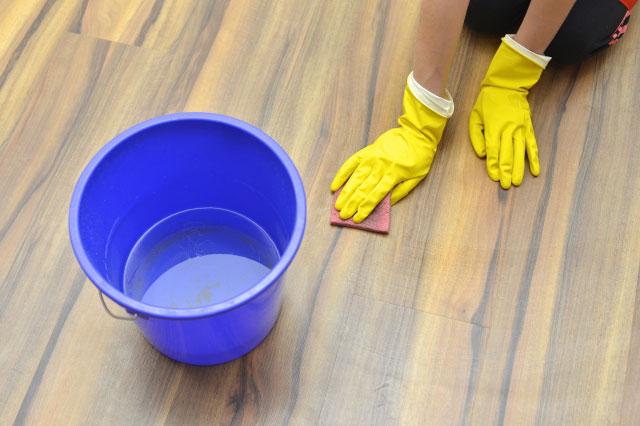 ペットが汚した床を掃除する人