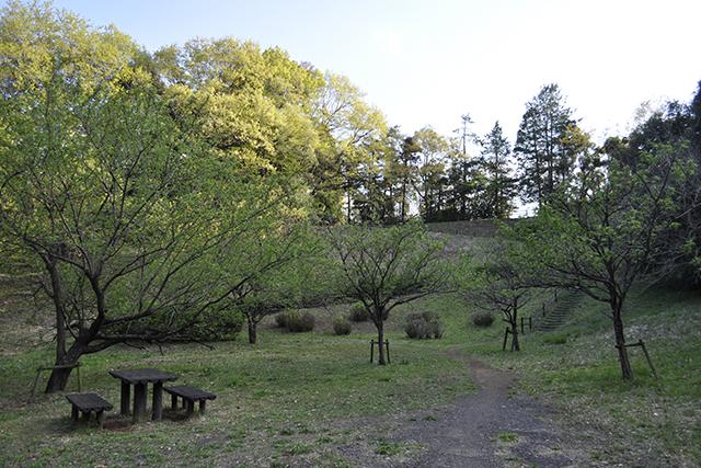 唐木田のゴルフ場