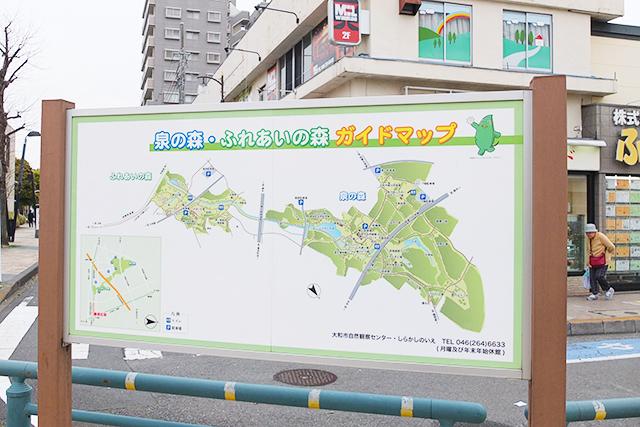 大和駅近くの自然