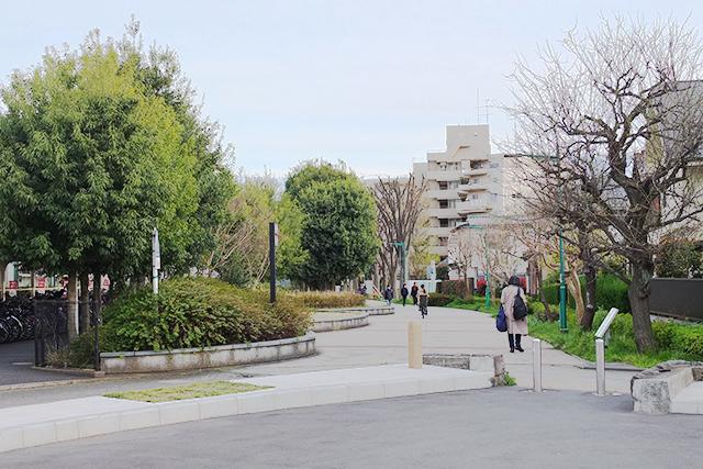 府中本町の歩道