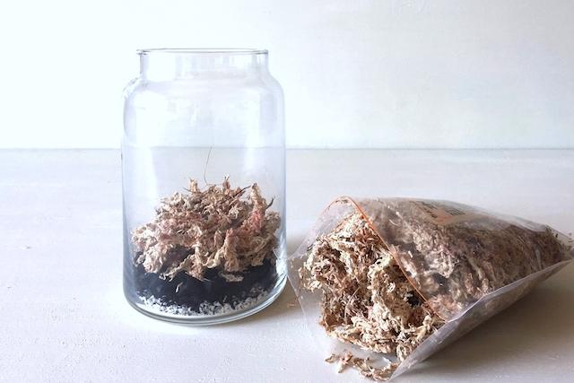 インテリアボトルを使ったテラリウムの作り方:インテリアボトルに水苔を入れる