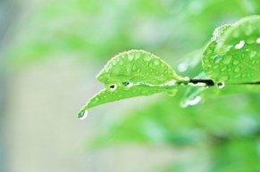 梅雨の時期でも気持ちよく過ごしたい
