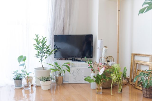 【一人暮らし × インテリア】インスタグラマーmariaさんのお部屋:テレビ