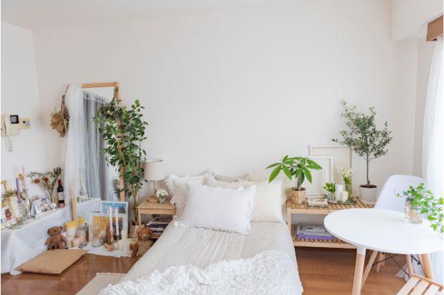 【一人暮らし × インテリア】インスタグラマーmariaさんのお部屋:mariaさんお気に入りのアングル。ベッドの左右にグリーンとナチュラルな家具をレイアウト