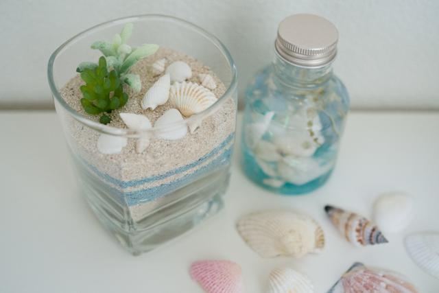 【夏の工作やハンドメイドに】簡単&おしゃれ!貝殻を使ったインテリアアイデア3選