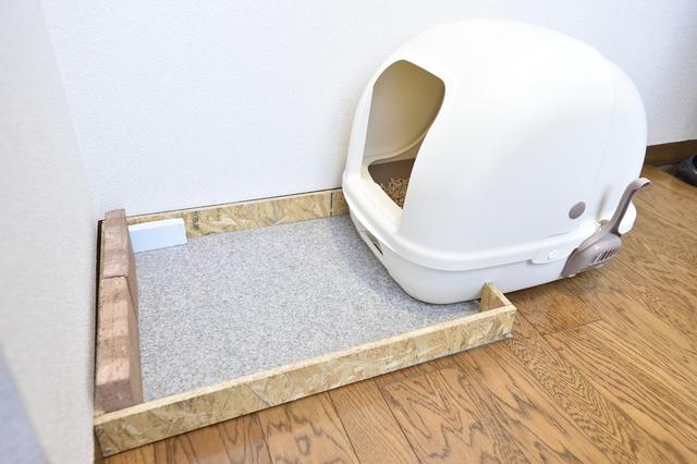 トイレの猫砂の飛び散り防止のため、木材の囲いが動かないようにレンガで固定している様子