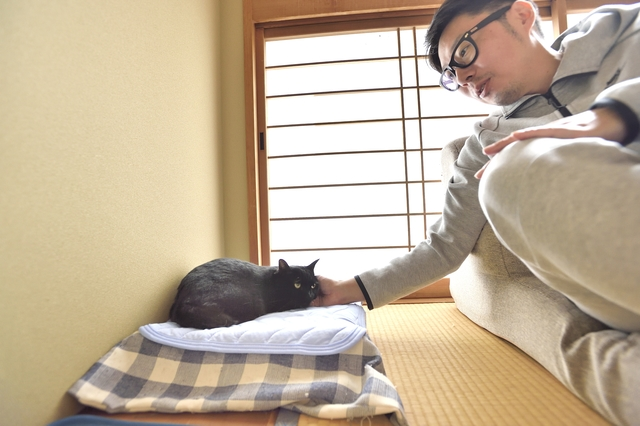 メゾネット賃貸物件に住む、猫のあんこと鈴木さん(ご主人)