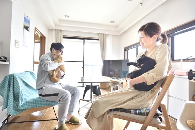 ペット可のメゾネット賃貸物件に住む、猫のあんこときなこ、鈴木ご夫妻