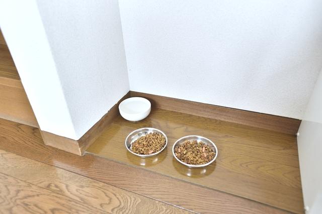 ペット可のメゾネット賃貸の階段の脇に置かれた猫のエサ