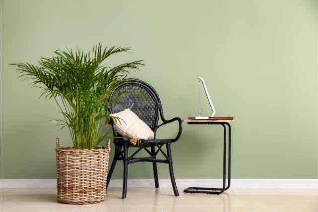 コの字型のサイドテーブルと椅子と植物