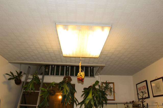 一人暮らし中の田中さんが新居に取り付けたレトロな照明