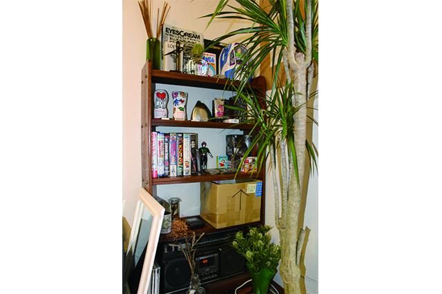 一人暮らし中の田中さん宅にある観葉植物