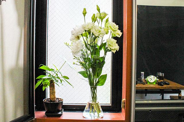 もりすけさんの自宅のお花