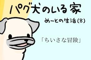 【パグ犬のいる家】めーとの生活(8)「ちいさな冒険」