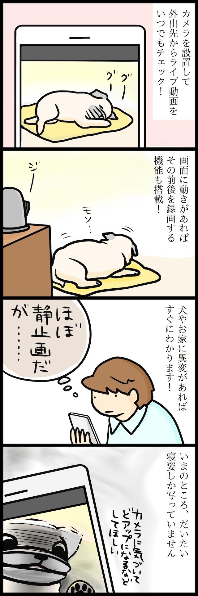 【パグ犬のいる家】めーとの生活(10)「お留守番」2ページ目