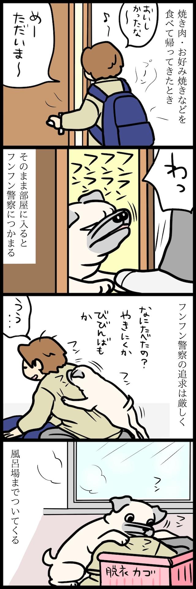 【パグ犬のいる家】めーとの生活(12)「刑事の勘だよ」