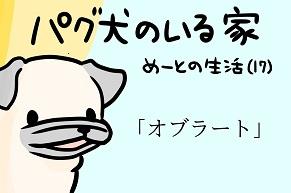 【パグ犬のいる家】めーとの生活(17)「オブラート」