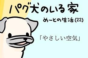 【パグ犬のいる家】めーとの生活(22)「やさしい空気」